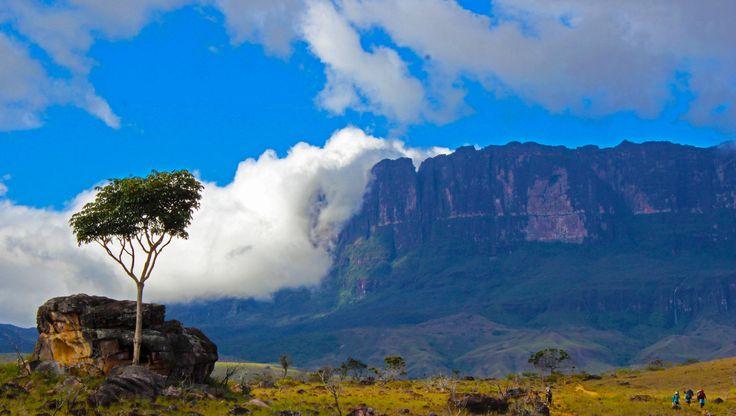 Vista panorámica del monte Roraima