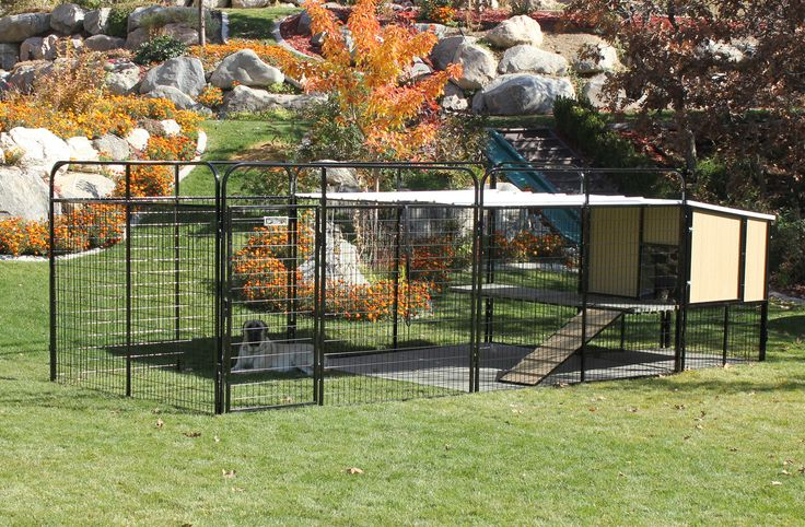 1000 images about kennel castle on pinterest to be dog for Giant breed dog kennel