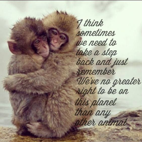 We have no more right   than any other animal...