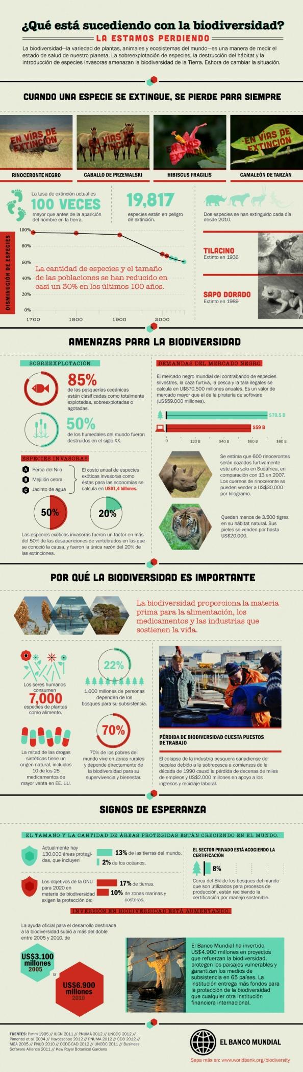 ¿Qué está sucediendo con la biodiversidad? Infographic