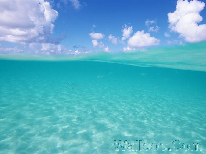 Salt Water Diary Tropical Bedroom Turquoise Paint Beachy
