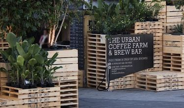 The Urban Coffee Farm & Brew Bar, a lush, jungle-esque plantation popping-up in the city's center.