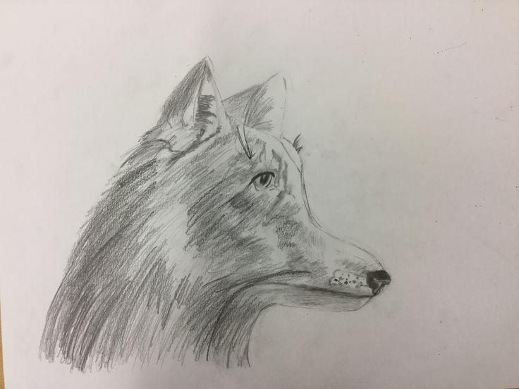 Dit is mijn vos. Ik vind hem wel mooi geworden, alleen het voorhoofd is een beetje raar. Volgende keer ga ik verder met de achtergrond.