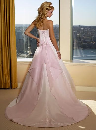 Pink Wedding Dresses Princess : Pink wedding gowns on gown box blush