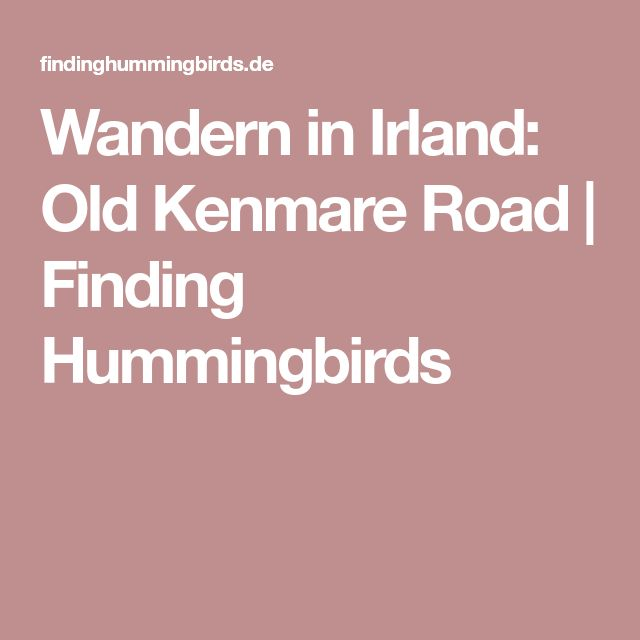 Wandern in Irland: Old Kenmare Road | Finding Hummingbirds