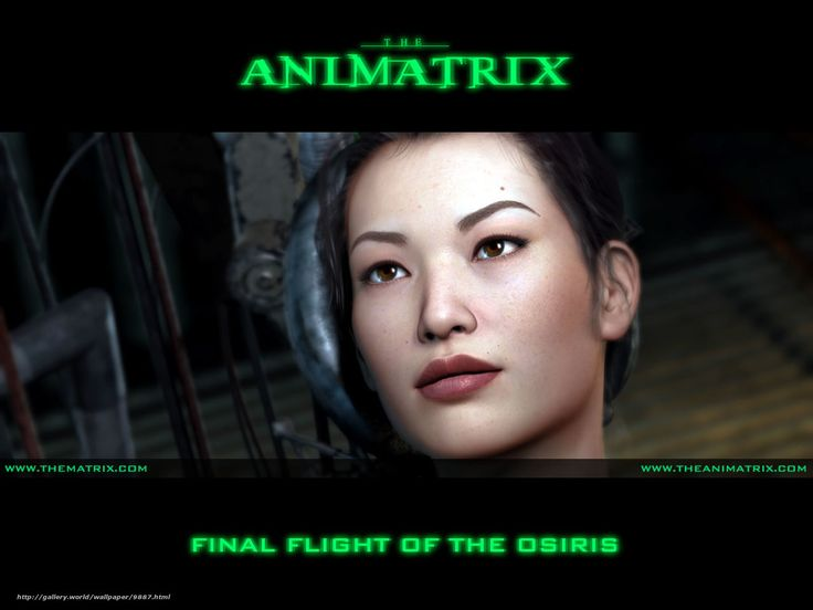 Final Flight of Osiris, another one of the 9 short animation films from the Animatrix DVD