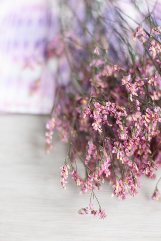 Lavender Flowers I Photo by Michelle Smith