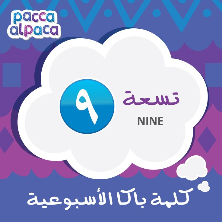 This week Pacca learns how to say Nine in Arabic!