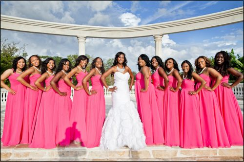 I Love The Bride's Gown. Too Many Bridesmaids For Me