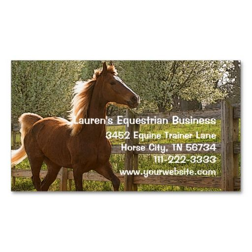 Horse trainer or equine business beautiful animal magnetic for Horse trainer business cards