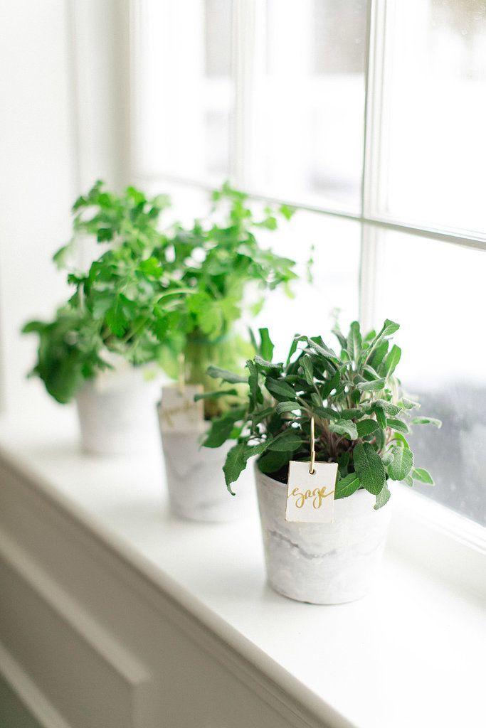 Decorating Ideas For Rentals | POPSUGAR Home