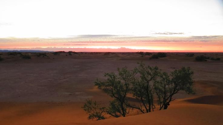 Good Morning Sahara