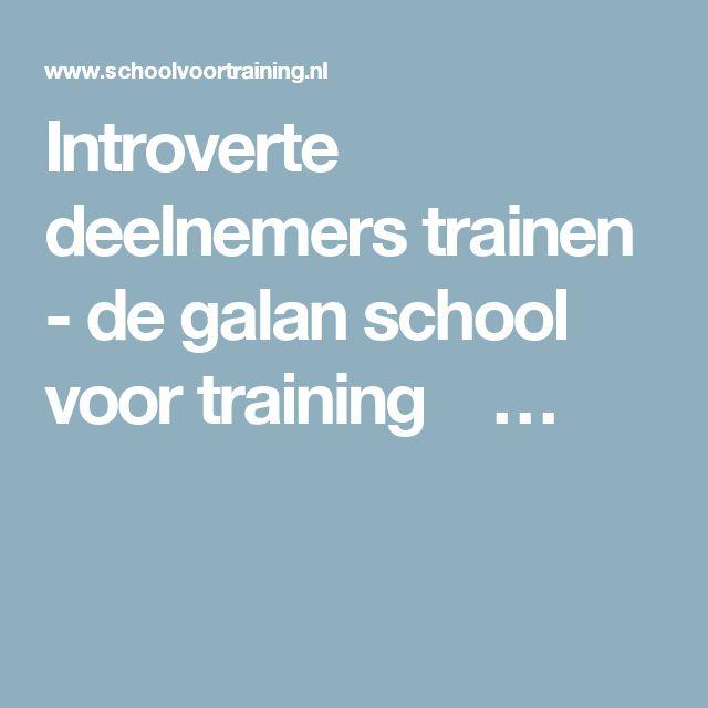 Introverte deelnemers trainen - de galan school voor training  …