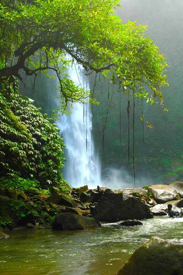 Nunung Waterfall, Bali www.villabuddha.com
