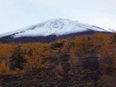 Otoño en el Monte Fuji
