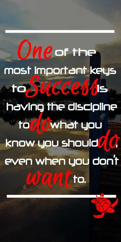 discipline is the key to success Recent studies by psychologists have shown that self-discipline is key to academic success for instance, a study of eighth-graders found that self-discipline was.