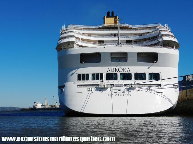 Géants des mers avec Excursions Maritimes Québec sur le fleuve à Québec.