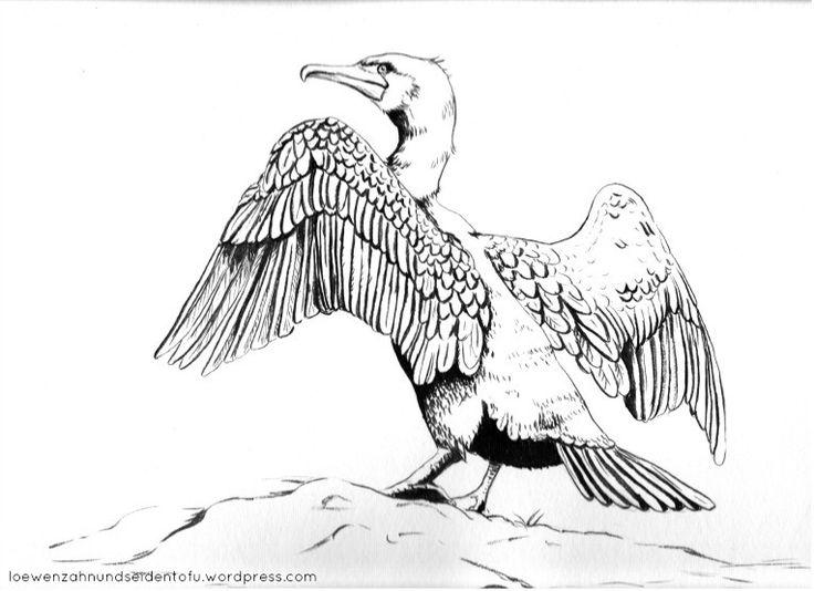 #inktober animals: the cormorant