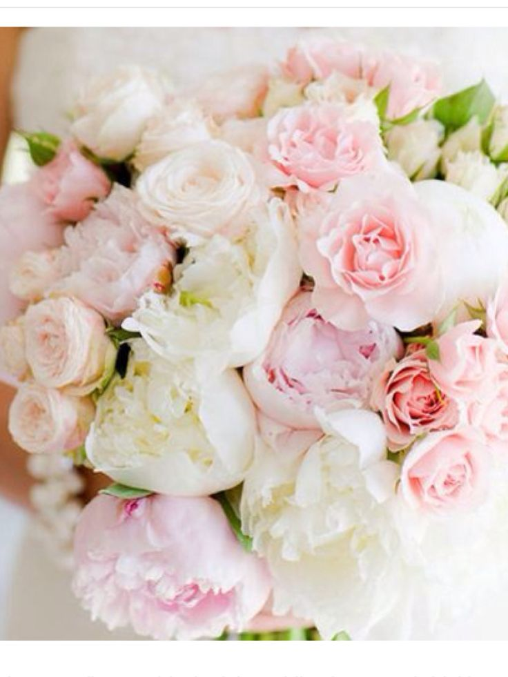 Love the blush pinks