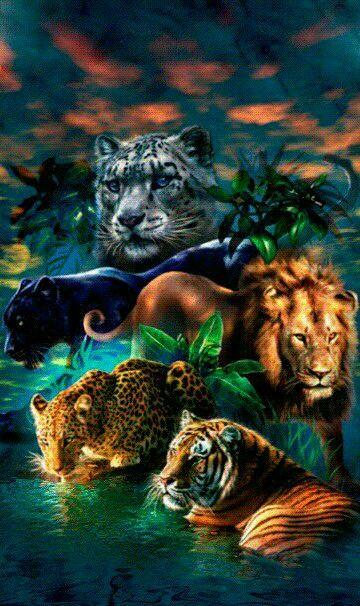 All my favorite animals http://www.shopprice.com.au/