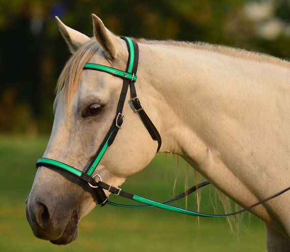 A handmade custom bridle and reins from TwoHorseTack.com. Check out our website for more great products and options.    Made from 3/4 Beta Biothane with