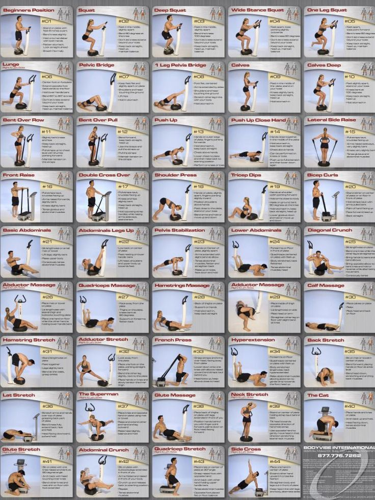 whole body vibration Our series of whole body vibration machine exercise articles continues with a  wbv training program for the core muscles if you prefer to start.