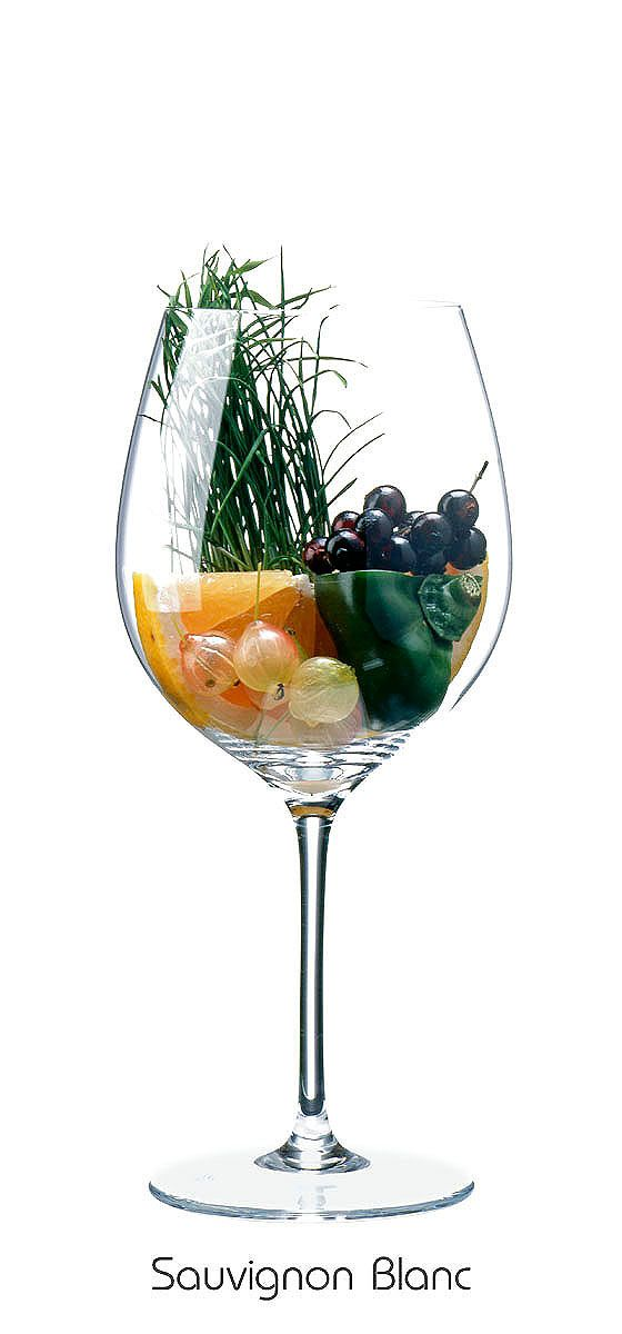 SAUVIGNON BLANC Grapefruit, gooseberry, capsicum (green), currant (black), grass