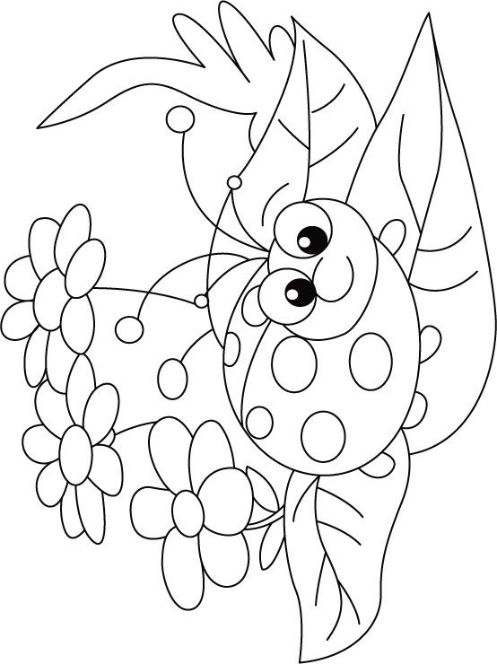 ladybug on flower rug coloring pages