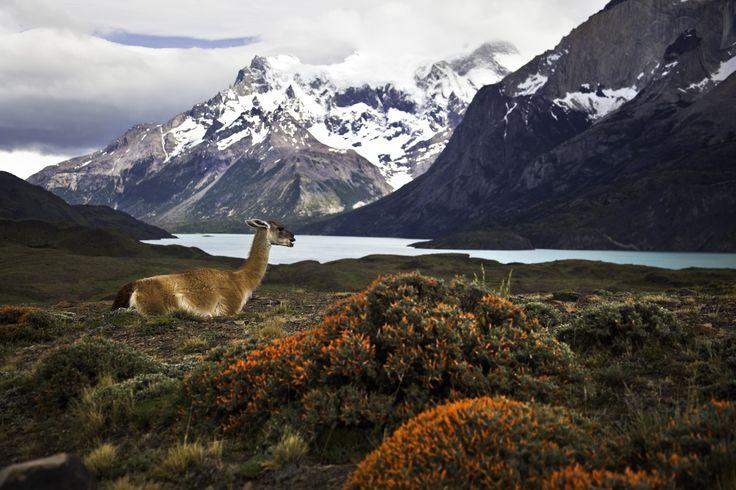 Beautiful Chile