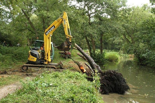 Tree stump about to be lifted clear of Cranleigh Waters in Hunt Park. Thank you to members of the Newbury Working Party Group who did the job for us.