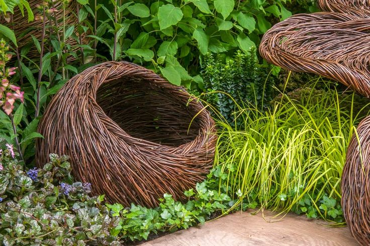 Breast Cancer Haven RHS Chelsea 2015