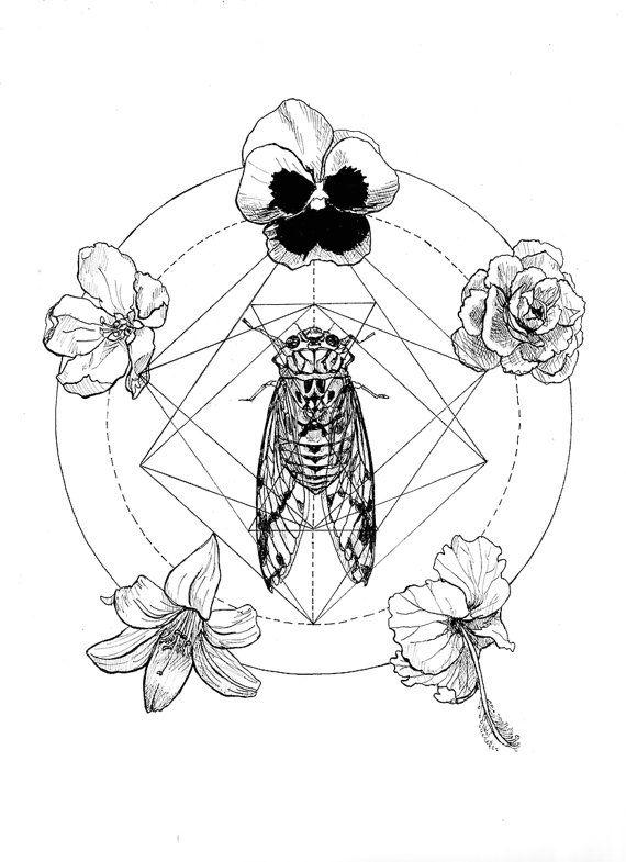 cicada print print illustration geometric Print by shopcarlaromero