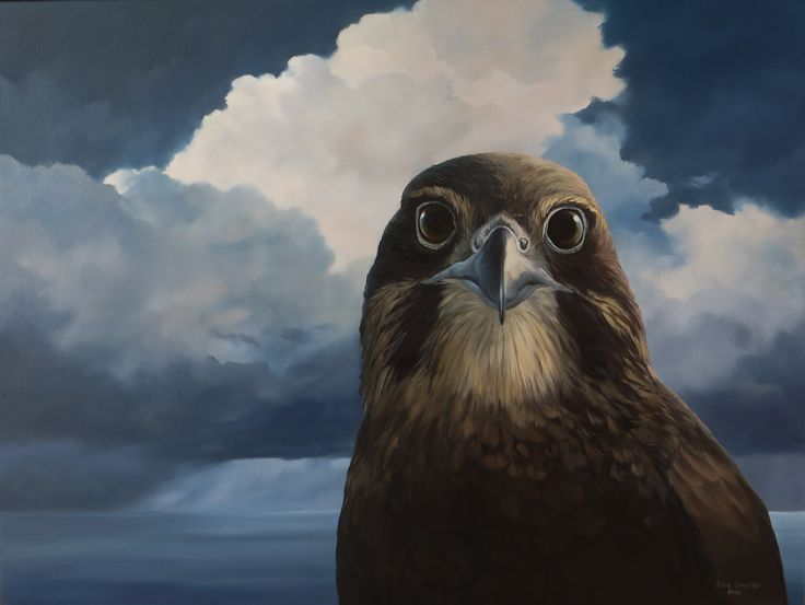 Let this falcon entice you to see the gorgeous New Zealand landscapes by artist Jane Sinclair! She truly captures the land's magical essence.