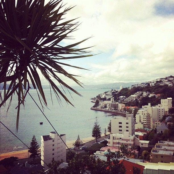 Looking down on Oriental Parade, Wellington, New Zealand