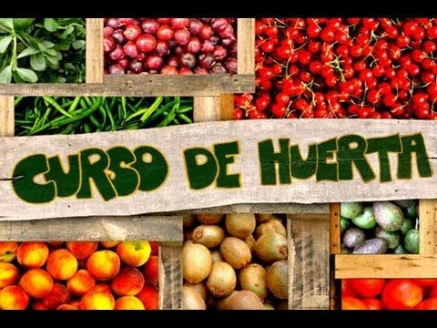 curso online que ensina a fazer horta orgânica em casa.