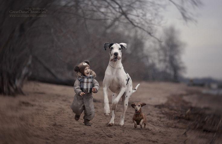 Фото: Трогательные снимки: маленькие дети в объятьях своих лучших друзей (Фото)