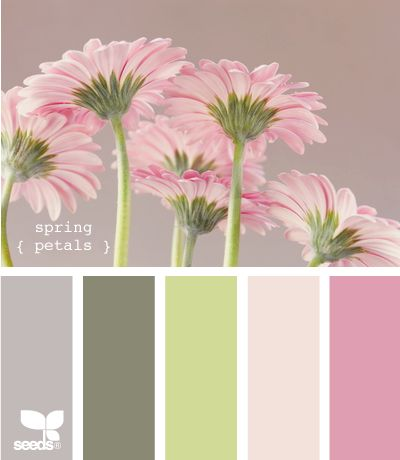 Great palette for a little girls room I think it would be cool to do a wall of giant flowers like this