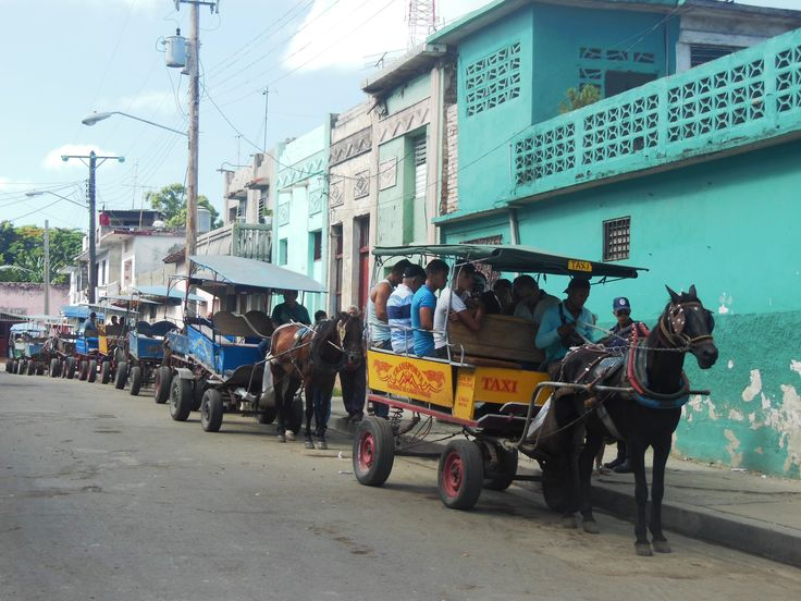 """""""Taxi Stand"""" As the lead wagon fills and moves on, the horses behind all step forward (even as the drivers chat in the shade of doorways). The horses know their job! (Photo by Kathryn MacDonald©)"""