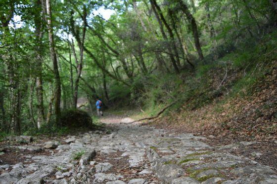 Efimerata_Enamórate del Valle de Mena_calzada romana