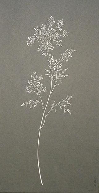 PAPER CUT-OUT OF QUEEN ANNE'S LACE