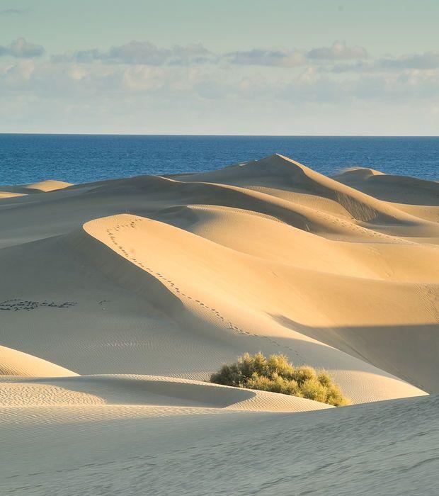 les dunes du Pilat (Aquitaine)