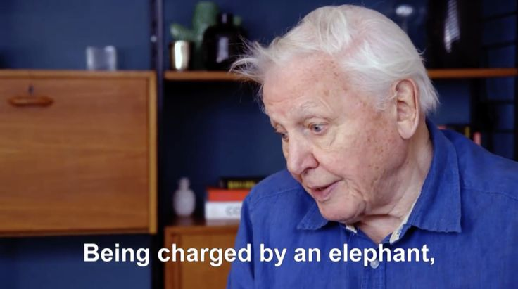 The legendary Sir David Attenborough turns 91-years-young today! What a career he's had..