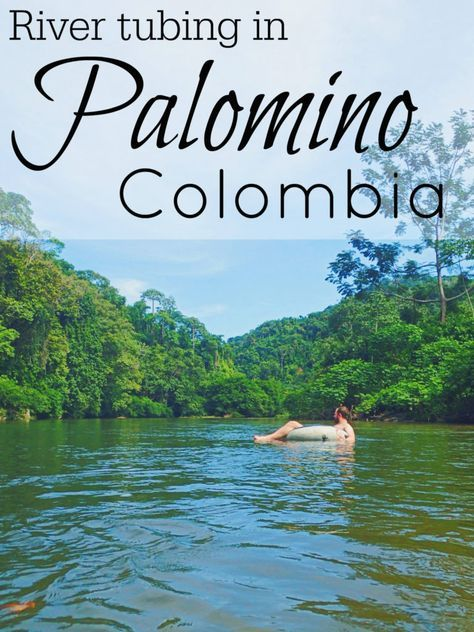 Palomino Colombia Travel Guide