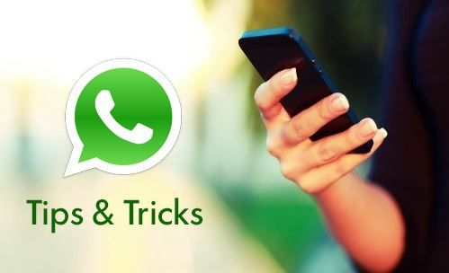 100% Proven WhatsApp Tricks and Tips For WhatsApp Lovers. We Have Shared Whatsapp Tricks and Cheats that You Must Use Today to Have More Enjoyable Whatsapp.