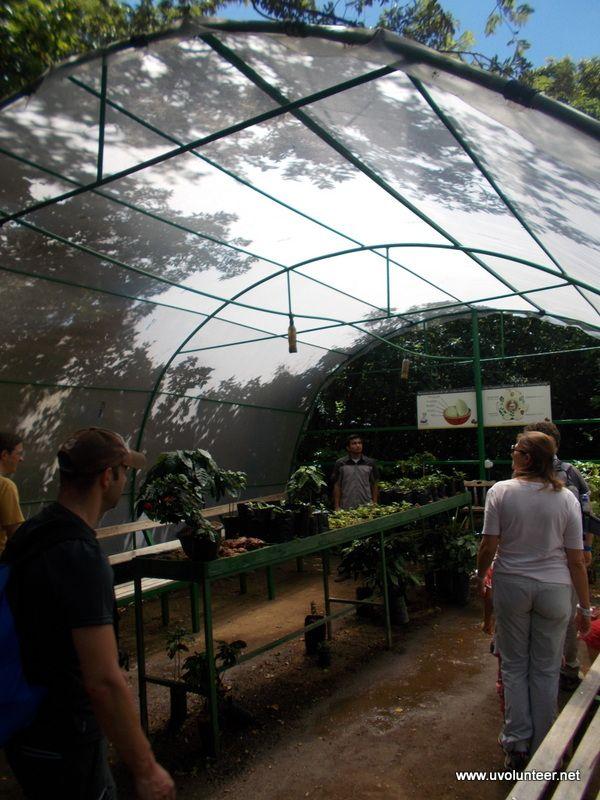 Free time in Costa Rica. https://www.uvolunteer.net/  volunteer opportunities, volunteer overseas, volunteer organization, volunteer opportunities abroad, volunteer work