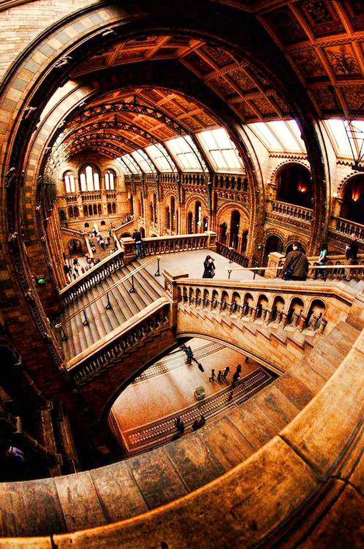 Free Museums: The cultural highlights of London are highlighted in many free museums. The British Museum hosts world-famous exhibitions, while the Tate Modern shows the best of British and International Modern Art.