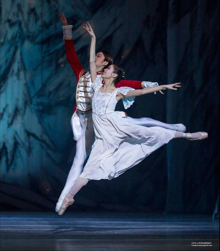 balet snd bratislava - Hľadať Googlom