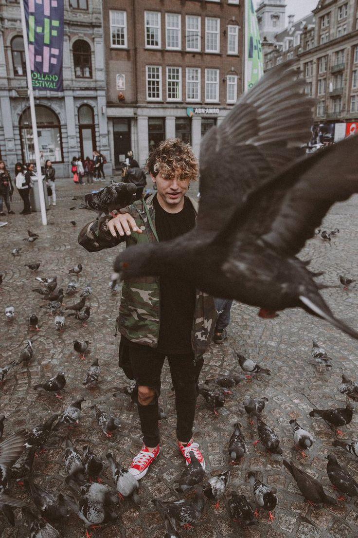 Those pigeons are savage