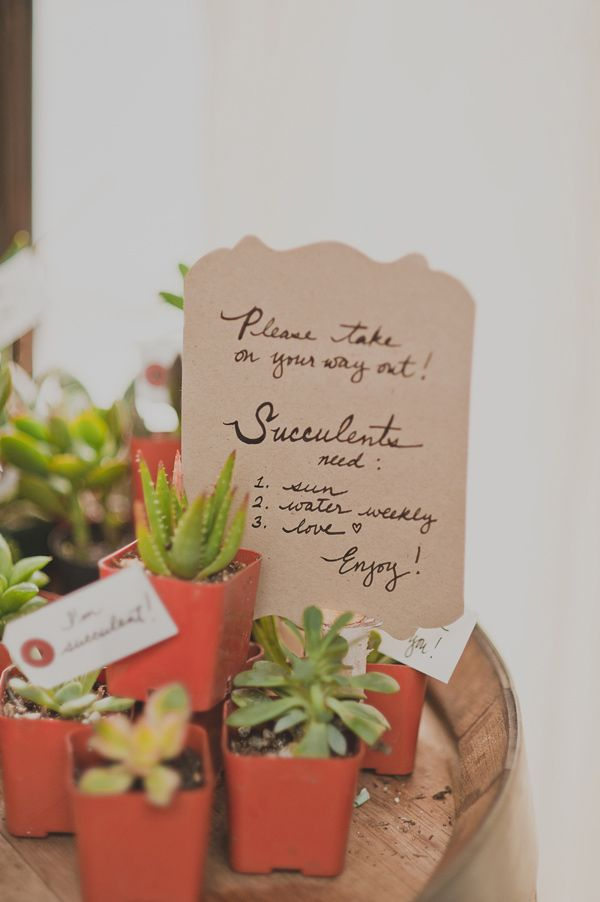 ideas for beach wedding party favors%0A Succulents as wedding favors at Brooklyn Winery