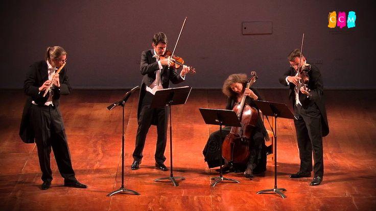SALUDO DE VIENA  CONCILIUM MUSICUM WIEN  2015